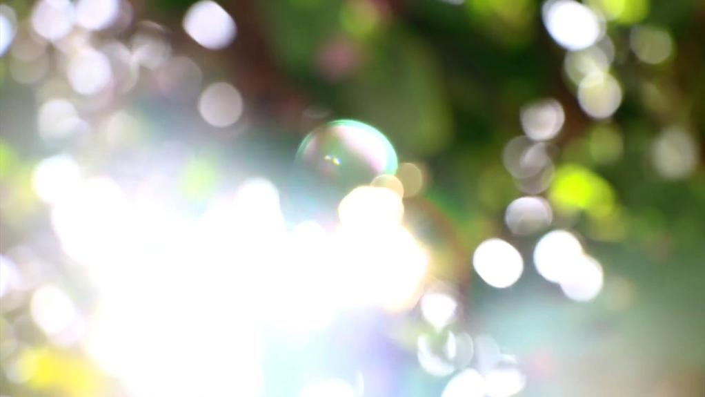 Lumière et nature
